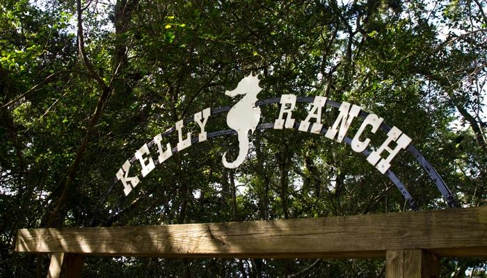 kelly seahorse ranch amelia island fl Kelly Seahorse Ranch