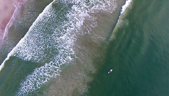 Rendezvous Film Fest Contest | Seaside Amelia Inn | Amelia Island FL | Featured Image